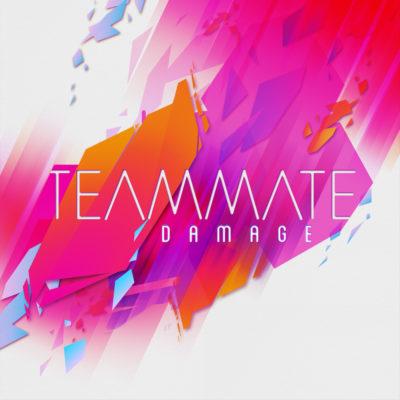 TEAMMATE_DAMAGE_1000x1000